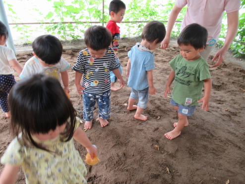 1歳児たまご組 どろんこ遊びをしました!